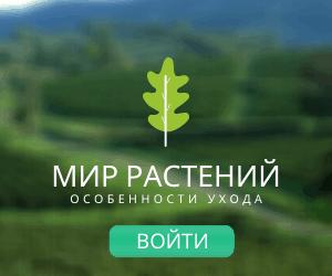 mir-rastenij-banner.png